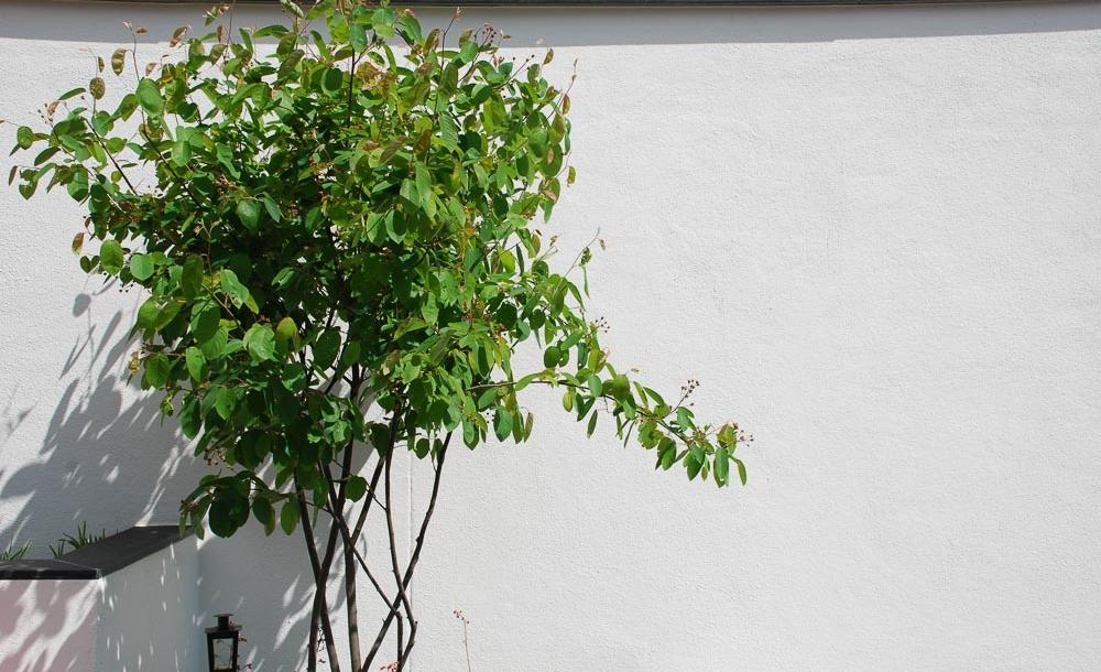 heininger-gartenbau-urlaub-zuhause-004
